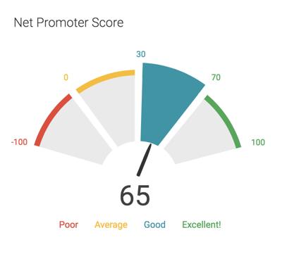 performance report nps average